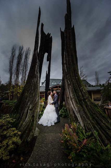 Willows Lodge Holiday wedding