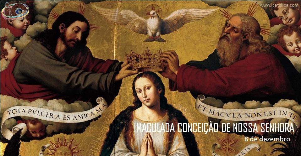 Icatolica Com Nossa Senhora Da Conceição Aparecida: ICatolica.com: Homilética: Solenidade Da Imaculada