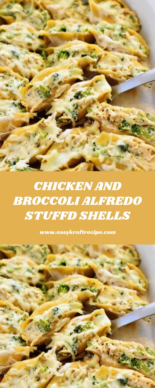 CHICKEN AND BROCCOLI ALFREDO STUFFD SHELLS