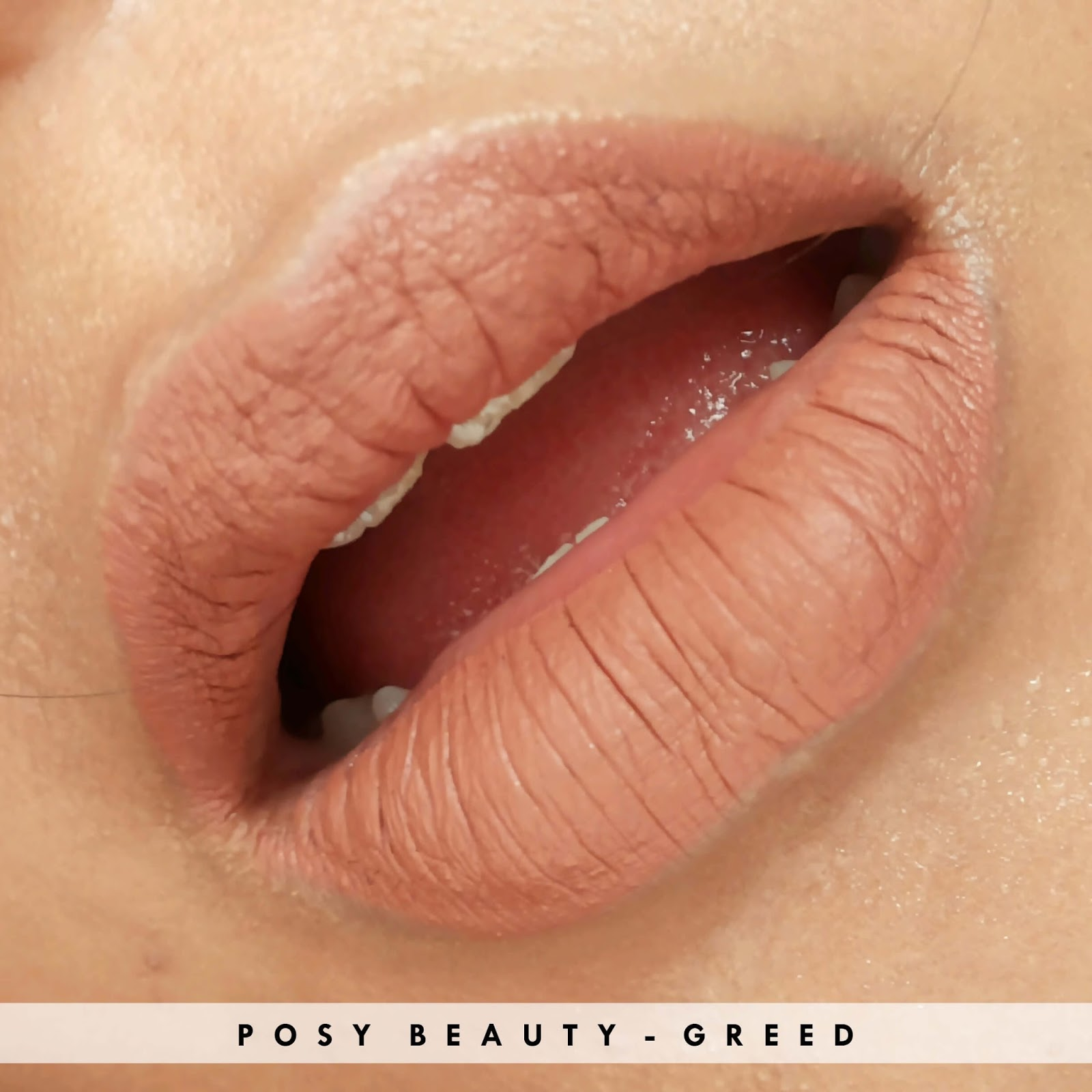 posy-beauty-greed, review-posy-beauty-greed, posy-beauty-lipstick-matte