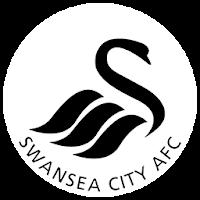 Swansea AFC