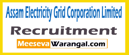 Assam Electricity Grid Corporation Limited (aegcl) Recruitment 2017