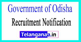 Office of the Chief District Medical Officer Mayurbhanj Government of Odisha Recruitment Notification  2017
