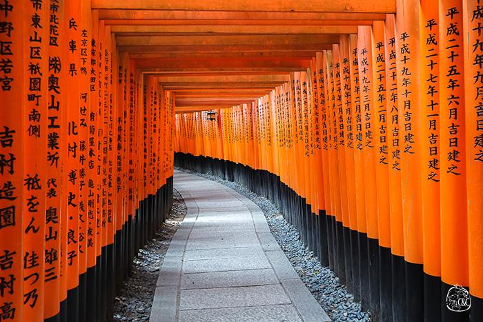 effet tunnel dans l'allée de torii du fushimi inari