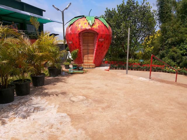 A bike ride to Mapro Garden Mahabaleshwar