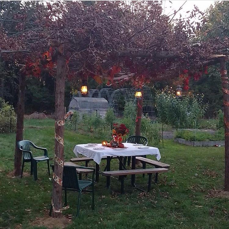 Sukkah in the garden | Land of Honey