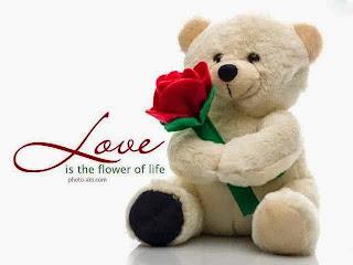 Boneka beruang love 2