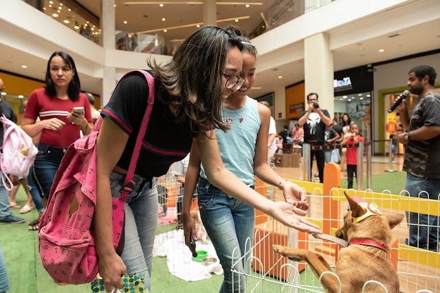 JK Shopping recebe feira de adoção pet