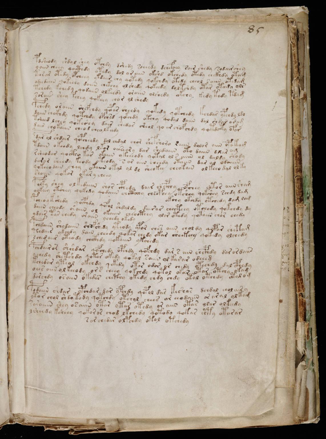 manuscrito153