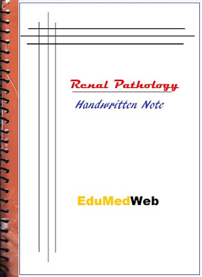 renal-pathology-handwritten-note