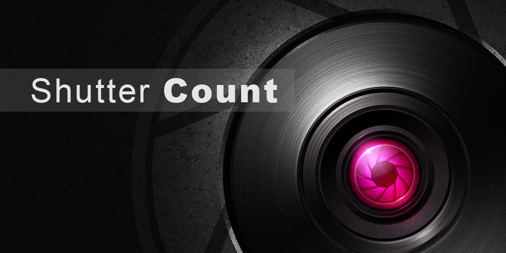 Cara Cek Shutter Count Kamera Nikon dan Canon
