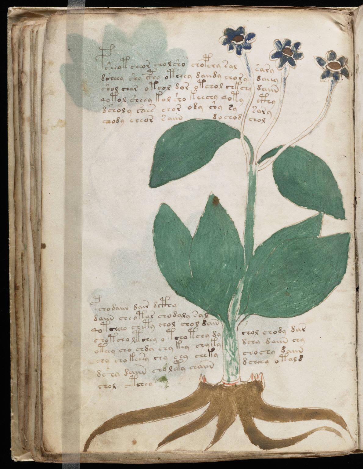 manuscrito092