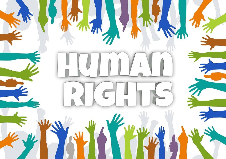14 Hak Dan Kewajiban Warga Negara Indonesia Berdasarkan Undang