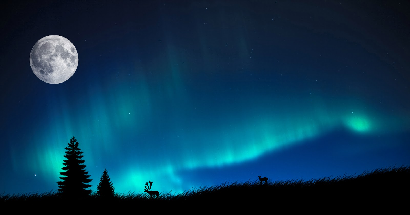 1000 Wallpapers Cute Moon And Aurora Borealis Wallpaper Beauty Walpaper