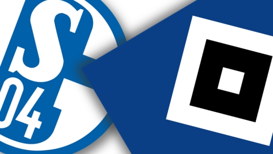 Schalke 04 vs Hamburger SV Full Match & Highlights 19 November 2017