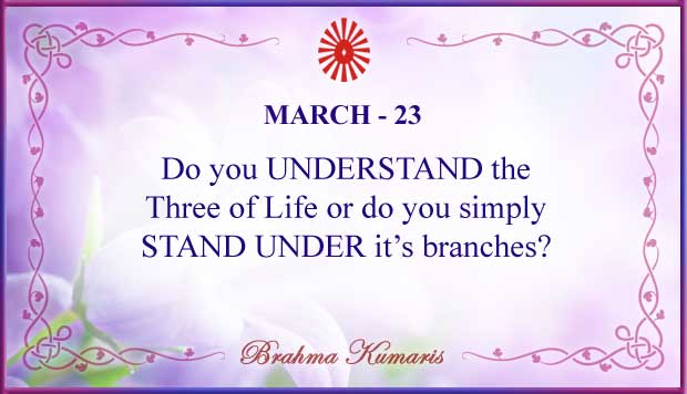 Thought For The Day March 23
