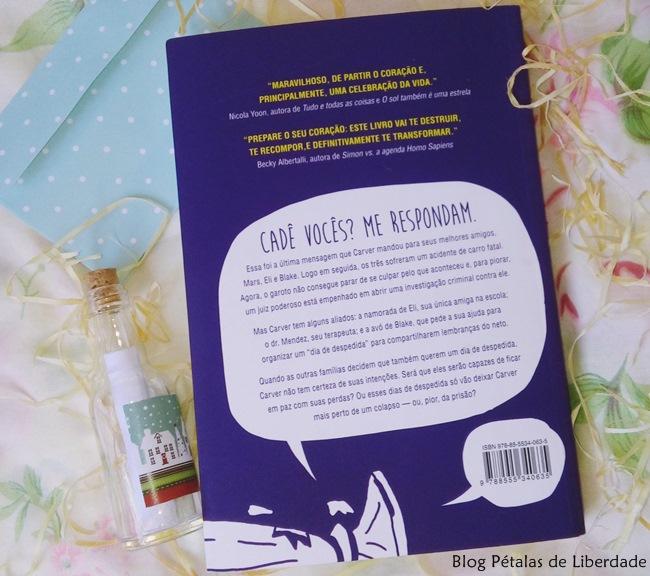 Resenha, livro, Dias-de-despedida, Jeff-Zentner, Seguinte, opiniao, trecho, quote, blog-literario, petalas-de-liberdade, capa, sinopse, sick-lit, young-adult