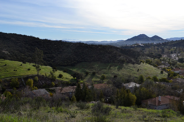 houses in the valley and chaparral on the hills