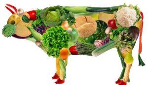 7 Menu Vegetarian Pemula Harus Diketahui, 11 Cara Diet Vegetarian yang Benar, 7 Menu Diet 7 Hari Tanpa Nasi Dapat Anda Coba