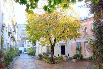 Paris : Cité Florale, la parenthèse enchantée - 36-38 et 50-54 rue Brillat-Savarin - XIIIème