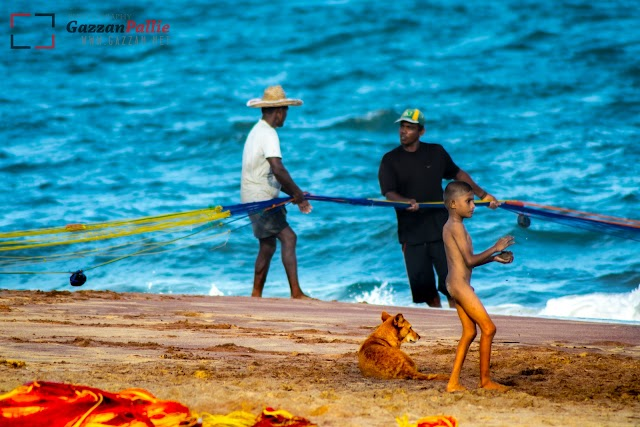 Fishing at Hambantota Beach