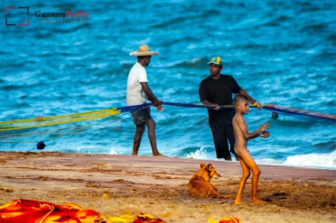 Fishing at Hambantota Beach