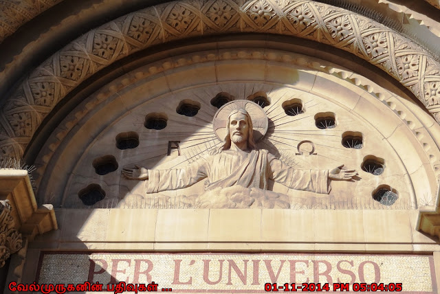 st peter and paul catholic church mass times