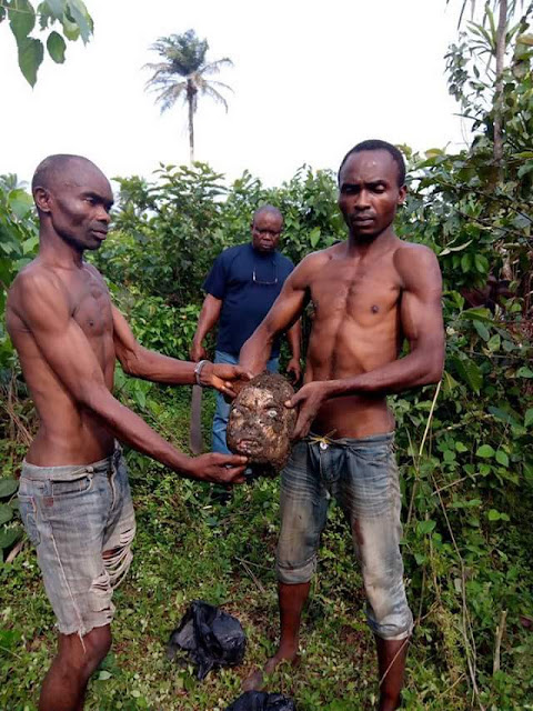 Graphic photos: Two men kill and behead their brother over land dispute in Akwa Ibom state