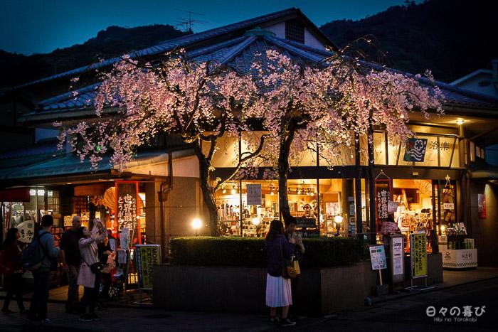 boutiques et cerisiers en fleurs, arashiyama, Kyoto
