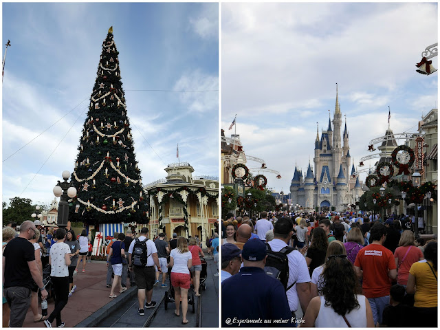 Florida - Orlando - Magic Kingdom {EamK on Tour}