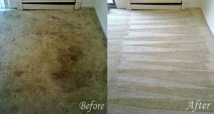 Upholstery Cleaning Miami 1 844 240 4040 Free Stain
