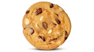 A light brown circular flat cookie with pieces of thin small rectanuglar pieces of orange zest and black spots of dark chocolate on a white background
