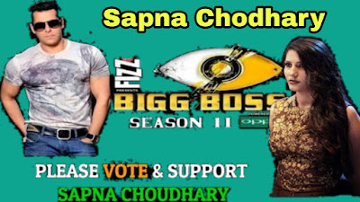 Sapna Chodhary Big Boss Session 11 Contestant