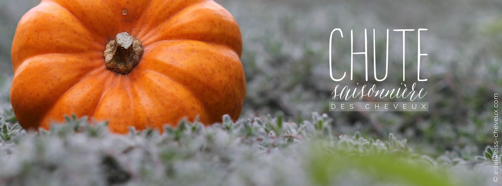journal capillaire d 39 edelweiss chute saisonni re des cheveux astuces et rem des naturels. Black Bedroom Furniture Sets. Home Design Ideas
