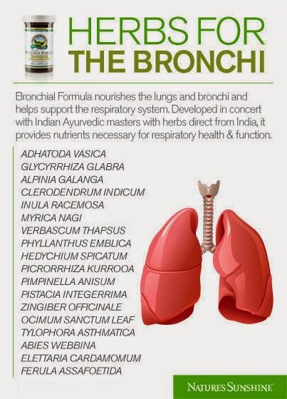 The Herb Garden Cough Cough Go Away
