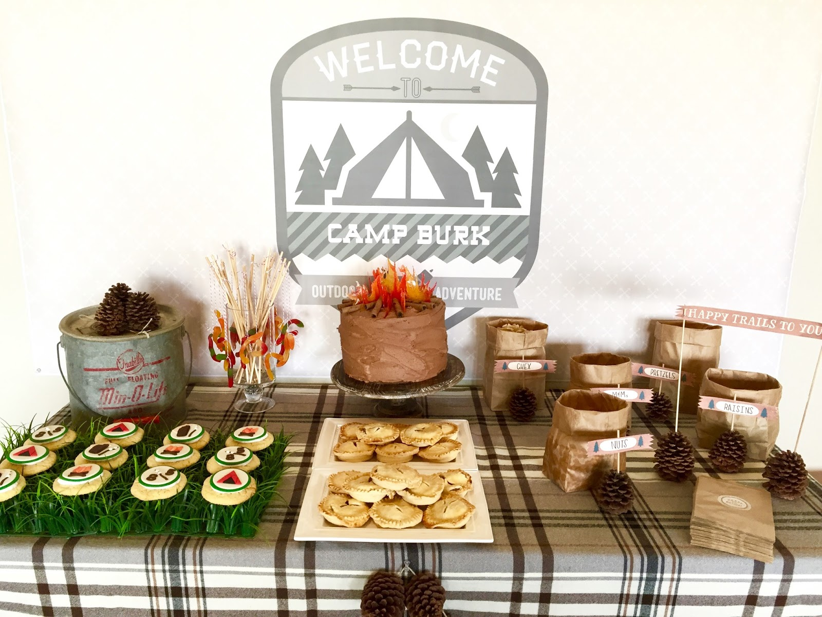 Camping Themed Birthday Party For The Kiddos