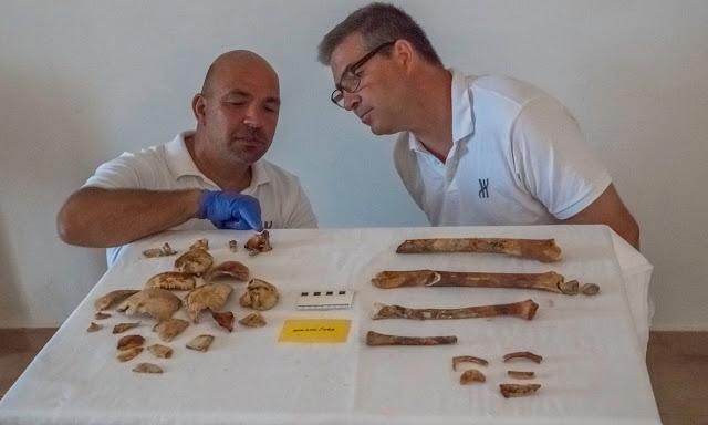 Θεοτόκης Θεοδούλου και Brendan Foley παρατηρούν μερικά από τα οστά, τα οποία είναι αποχρωματισμένα ένα σκούρο κόκκινο-καφέ,  ενδεχομένως λόγω της ηλικίας, ή ίσως από την πρόσληψη του σιδήρου που υπήρχε  στα κοντινά αντικείμενα  στον βυθό