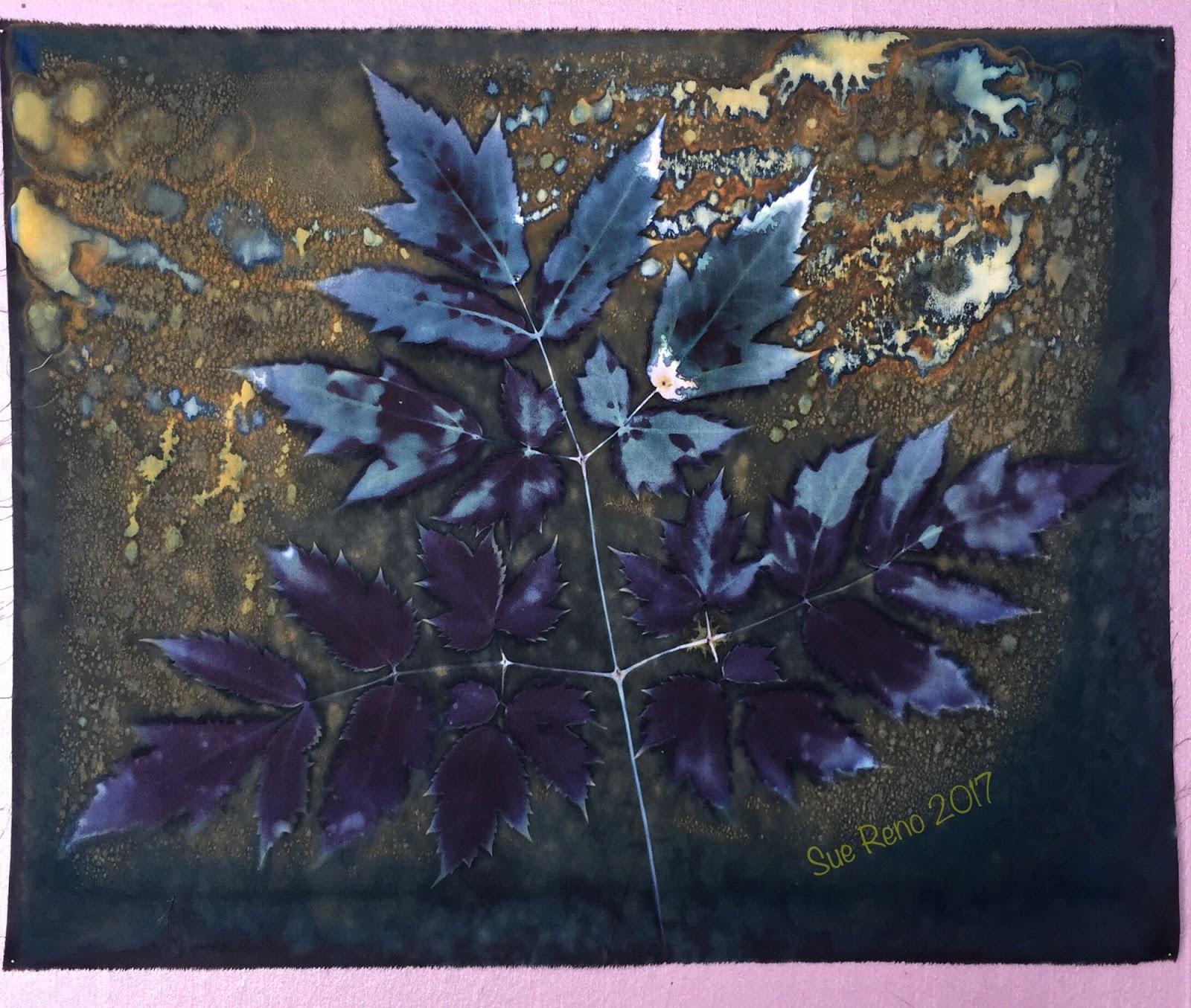 Sue Reno Studio Experiments in wet cyanotype Part 5