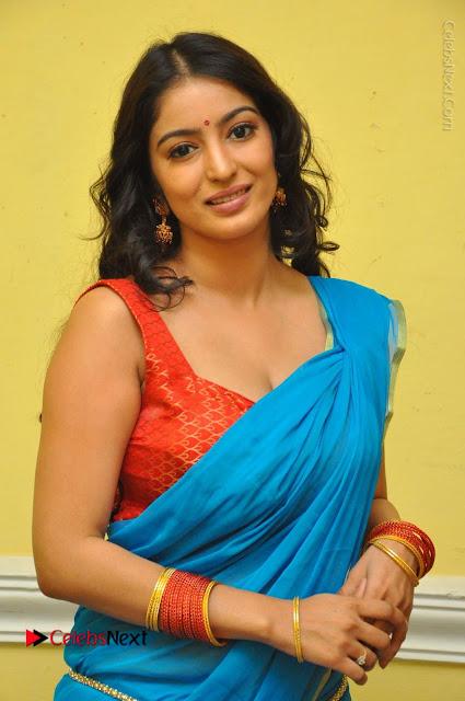 Telugu Actress Vaibhavi Stills in Blue Saree at Www.Meena Bazaar Movie Opening  0001.JPG