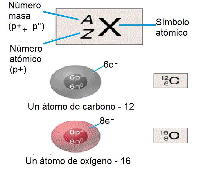 Guillermo Grass El átomo