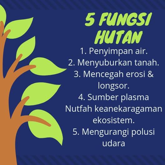 Manfaat hutan bagi masyarakat di kota