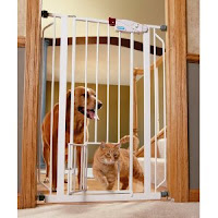 A cat passing through a cat-friendly baby gate  | Exclusively Cats Veterinary Hospital, Waterford, MI