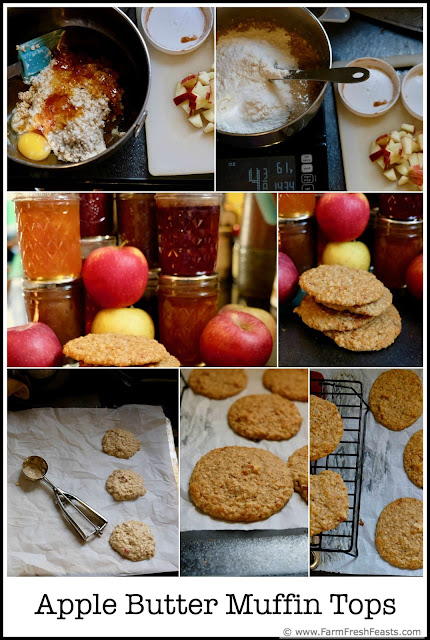 Sweetened with apple butter, chewy from steel cut oats, and studded with chunks of apples, these make ahead delights are a quick breakfast, afternoon, or bedtime snack. No muffin pan? No problem!