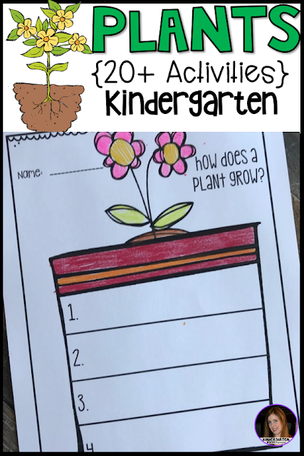 Are you looking for plant activities and lessons to fill your science and literacy centers throughout the spring? Then you will love plant activities!