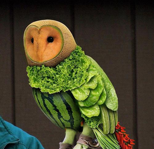 15 Amazing Animal Fruit Art