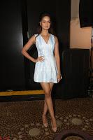 Shanvi Looks super cute in Small Mini Dress at IIFA Utsavam Awards press meet 27th March 2017 55.JPG