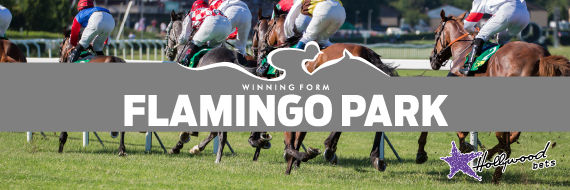 Flamingo Park-Horseracing