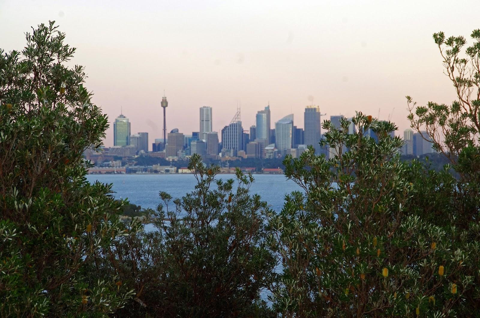 Sydney Skyline from the Gap