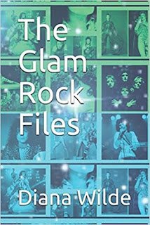The Glam Rock Files by Diana Wilde Review The Best Year Of Our Lives Phil Andrews