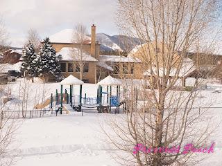 加州微風號雪景-playground